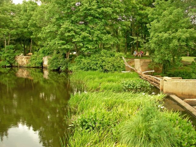 IMGP1382_dam at Luddams park