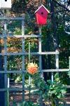 Home_DSC_5858 bird house