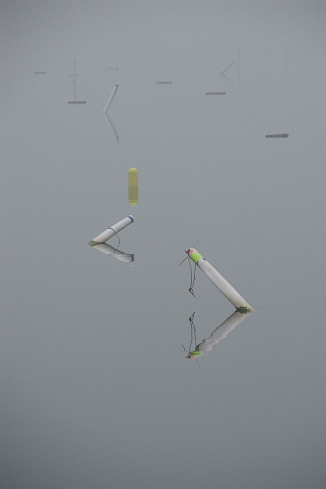 IMG_0673 Hingham Harbor surface like gray glass