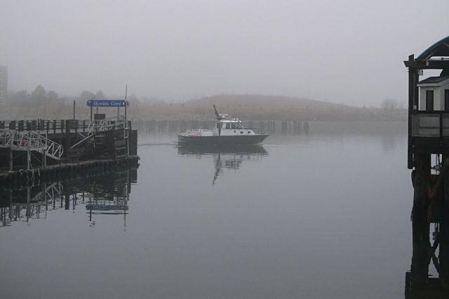 IMG_0679 Hewiits Cove