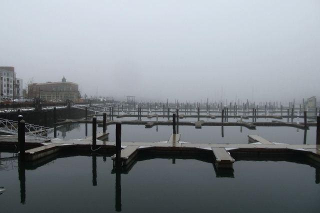 IMG_0681 Shipyard Marina