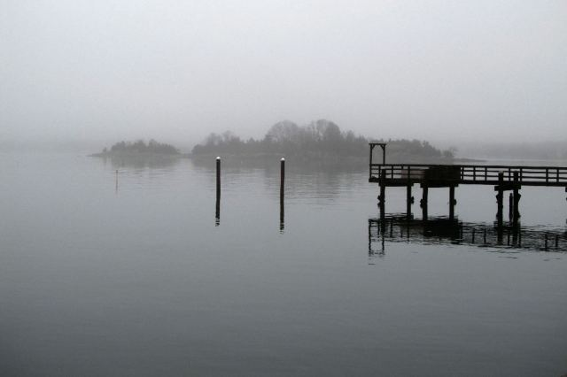 IMG_0691 Bones left for the winter