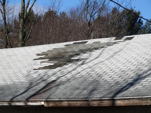 IMG_0719 garage roof