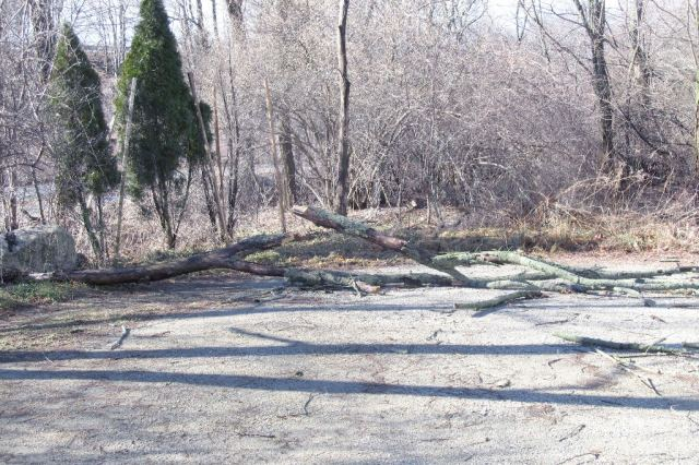 IMG_0720 dead tree edition