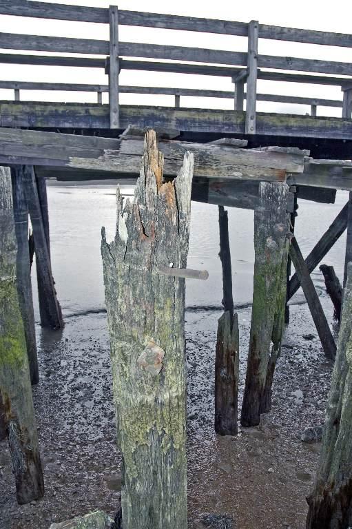 DSC_5928 old piers