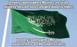 muslim minority