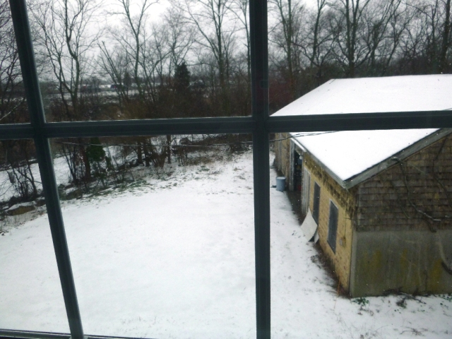 winter again P1000183