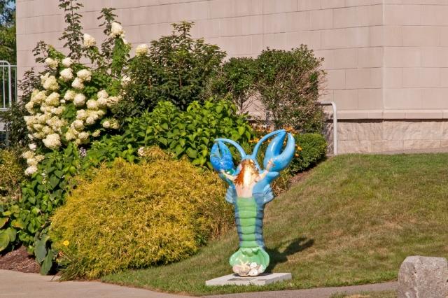 lobster_DSC0055